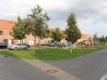 Zwolle: meer natuurspeelplaatsen in Stadshagen