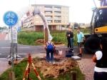 Beschadigd beeld weer terug in Stadshagen
