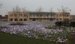 OBS De Krullevaar biedt studiebegeleiding aan leerlingen