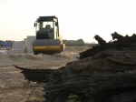 Verborgen oerbos wijkt voor Breecamp-Oost