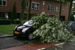 Storm richt schade aan in Stadshagen (foto's)