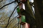 Vogelhuisjes ontmaskerd