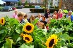 Scholieren verrassen Zonnehuisbewoners met zonnebloemen