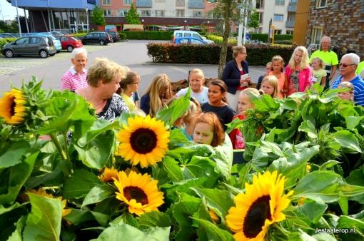 Verkiezingen: wat willen de partijen met 'groen' in Stadshagen?