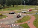 Zwanen nemen voorrang in Stadshagens verkeer