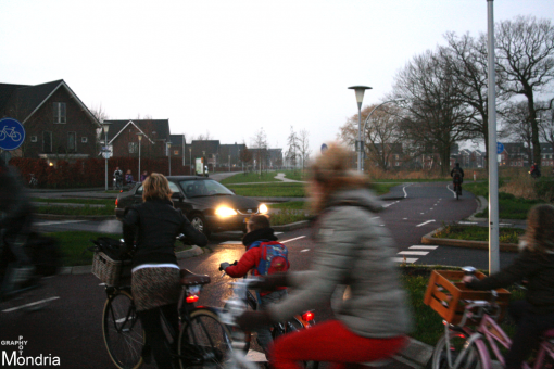 Verkeersschouw Belvédèrelaan-Twistvlietpad