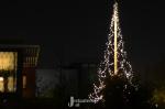 Kerstwandeling met scènes door Stadshagen