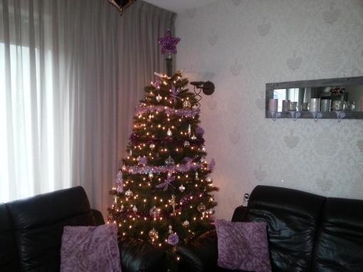 Versierde kerstbomen in huiskamers Stadshagen
