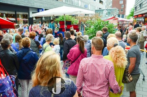 Stadshagenfestival druk bezocht (foto's)