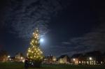 Dag Sinterklaas; welkom kerstbomen!