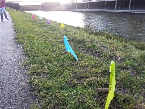 Hondenpoep in Stadshagen: is er een oplossing?
