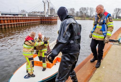 Brandweer redt ree uit water bij Twistvlietbrug
