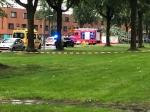 Vrouw overleden door omvallende boom Drapenierlaan tijdens noodweer