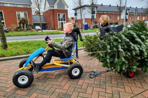 Kinderen in de weer met inzameling kerstbomen