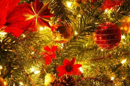Kerstbomenverkoop in winkelcentrum Stadshagen